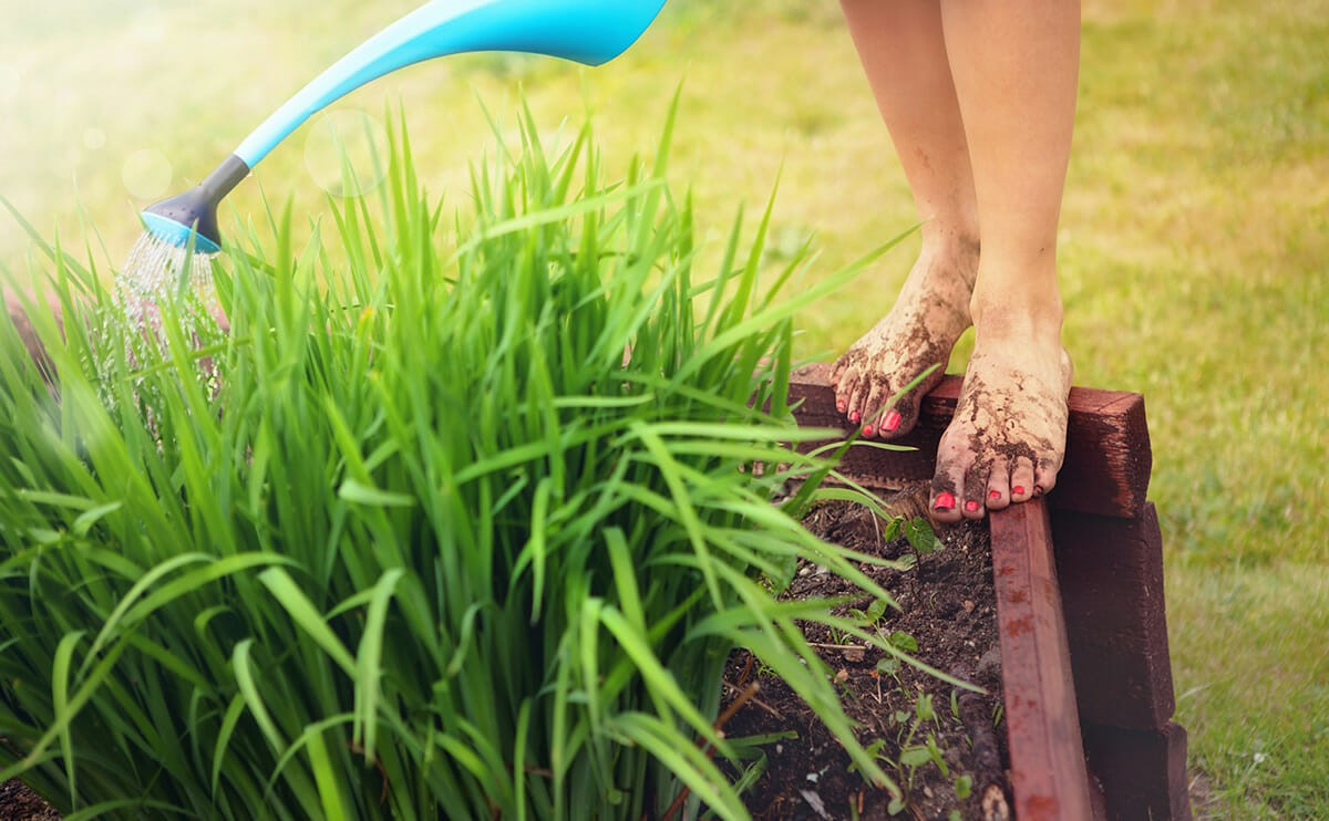 There's science behind how good we feel in the garden!